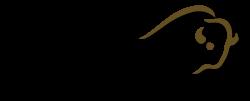 Holmelund Jagtrejser